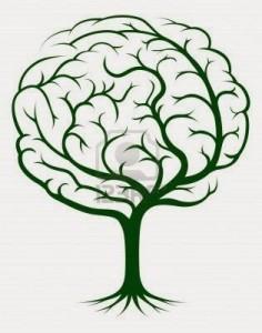 cervellopiante