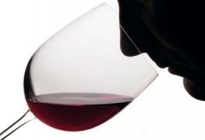 Degustazione del vino, dalle parole ai fatti!